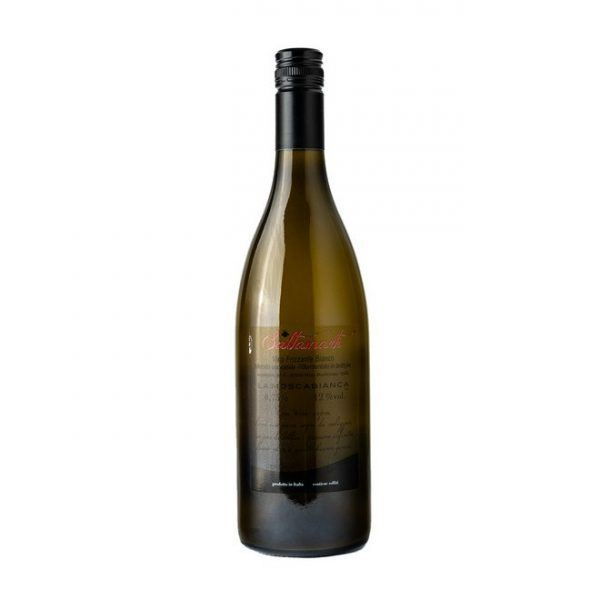chardonnay-nizza-monferrato-saltamarti-retro